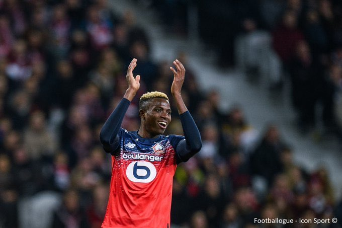 Super Eagles star voted Lille player of the season 1 Sportelo
